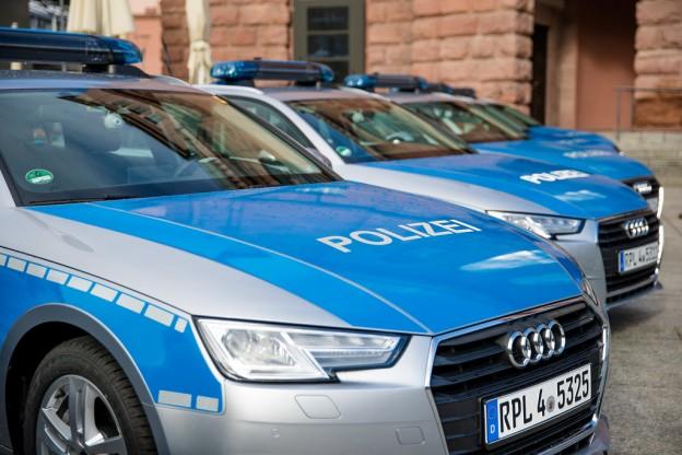 AfD-Unterwanderung: Wie blau ist die Polizei mittlerweile?
